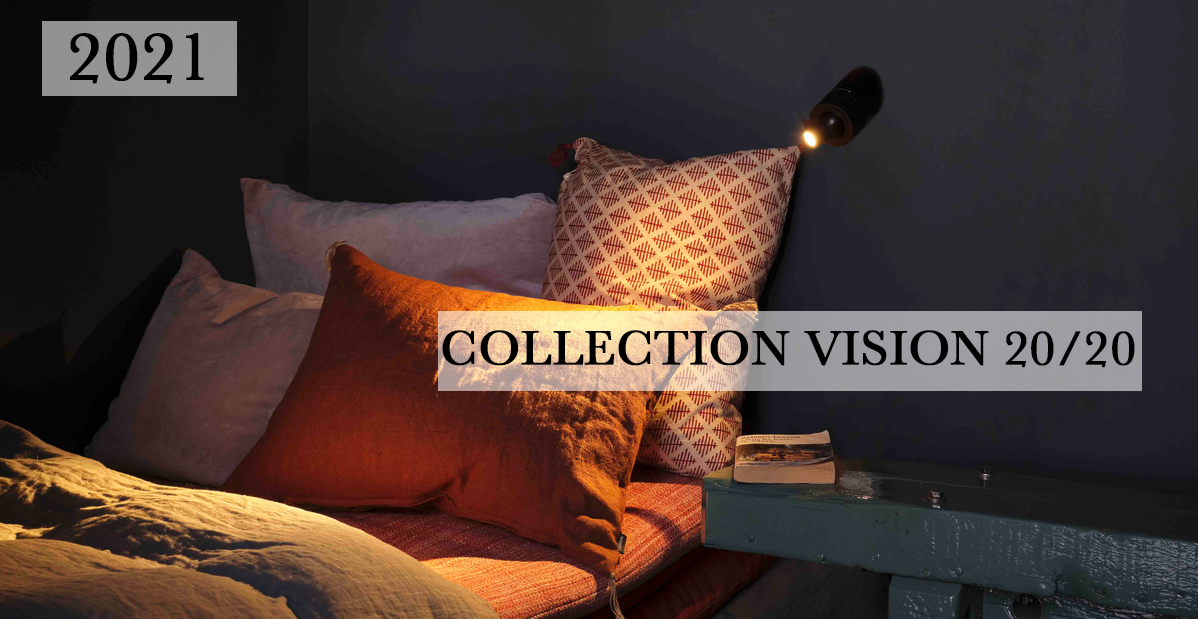 COLLECTION VISION.png